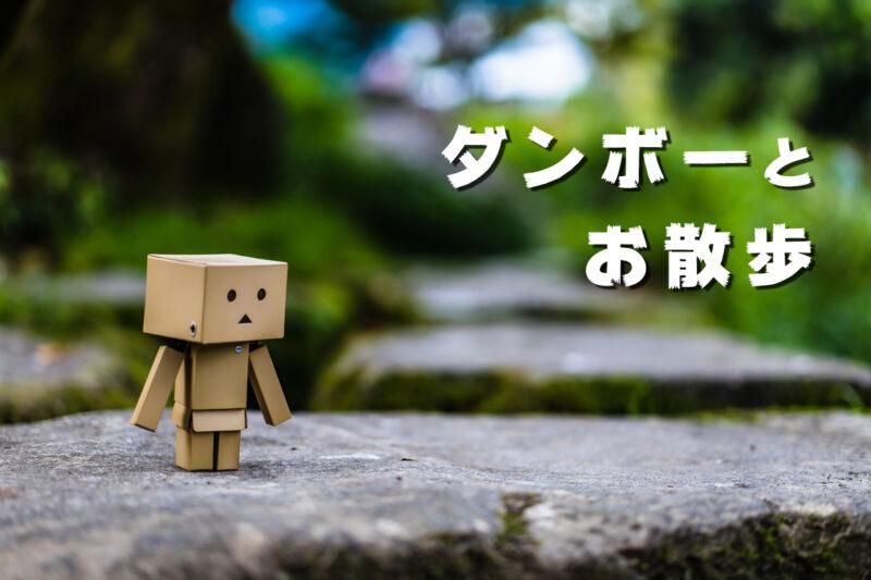 RoぶらっしゅStd