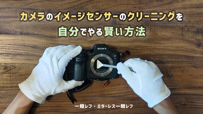 一眼レフカメラのイメージセンサーのクリーニングを自分でやる賢い方法